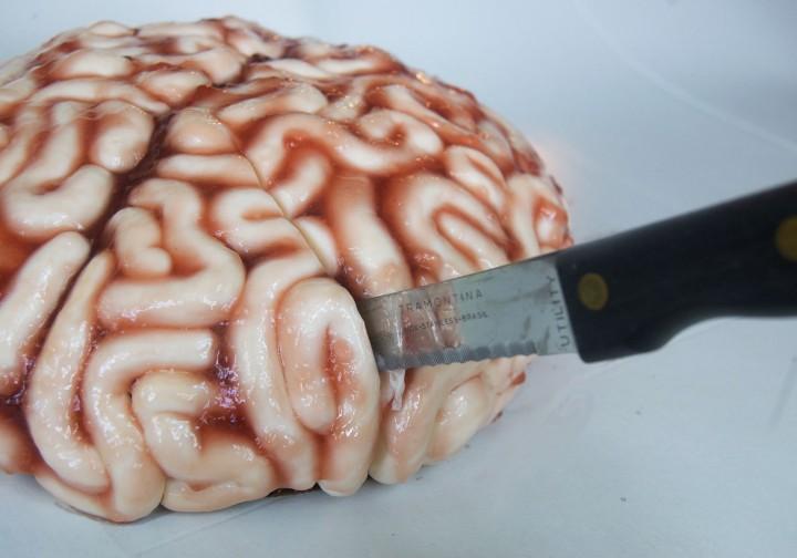 human brain cake
